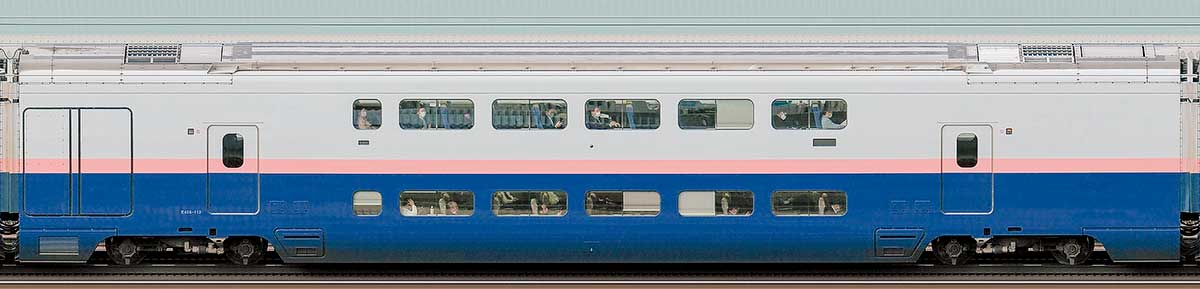 JR東日本E4系「Max」E456-112山側の側面写真