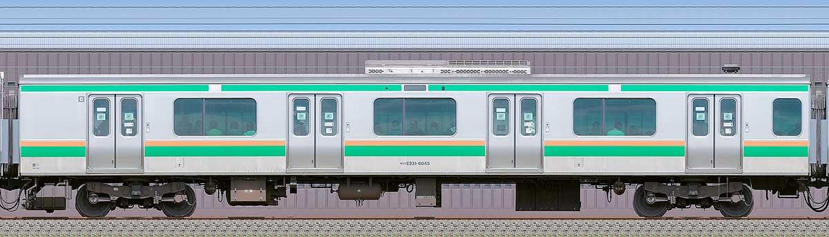 JR東日本E231系サハE231-6045海側の側面写真