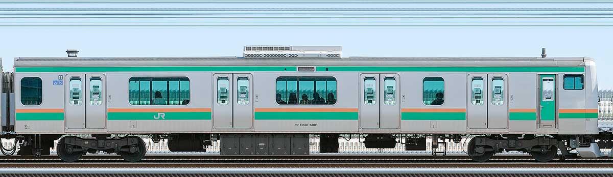 JR東日本E231系クハE230-6001山側の側面写真