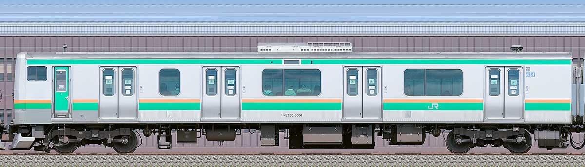 JR東日本E231系クハE230-6001海側の側面写真