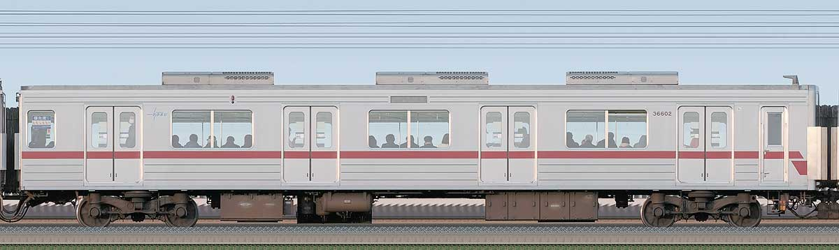 東武30000系サハ36602海側の側面写真