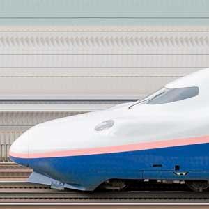 JR東日本E4系「Max」新潟新幹線車両センターP12編成(ラストランロゴ・山側)