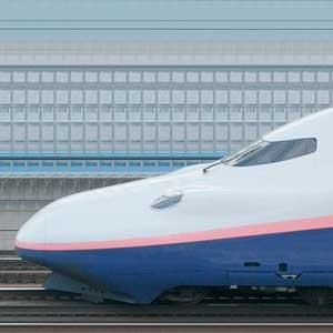 JR東日本E4系「Max」E444-25