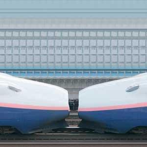 JR東日本E4系「Max」新潟新幹線車両センターP81編成+P82編成(山側)