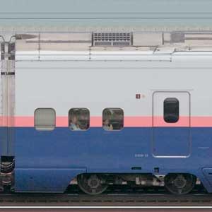 JR東日本E4系「Max」E458-12(2020年)