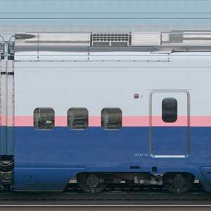JR東日本E4系「Max」E458-25