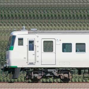 JR東日本大宮総合車両センター185系C1編成(山側)