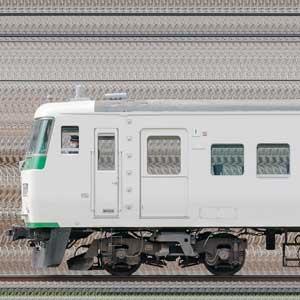 JR東日本大宮総合車両センター185系OM09編成(海側)