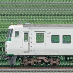 JR東日本大宮総合車両センター185系A3編成(海側)