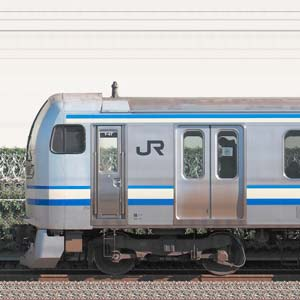 JR東日本 横須賀線・総武快速線 E217系Y-47編成(海側)