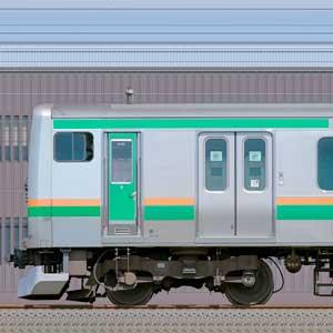JR東日本 国府津車両センター E231系K-01編成(海側)