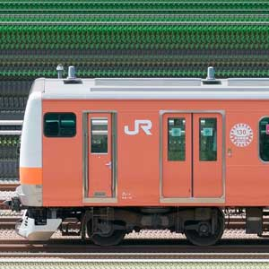 JR東日本 中央快速線 E233系T24編成(中央線開業130周年記念ラッピングトレイン・山側)